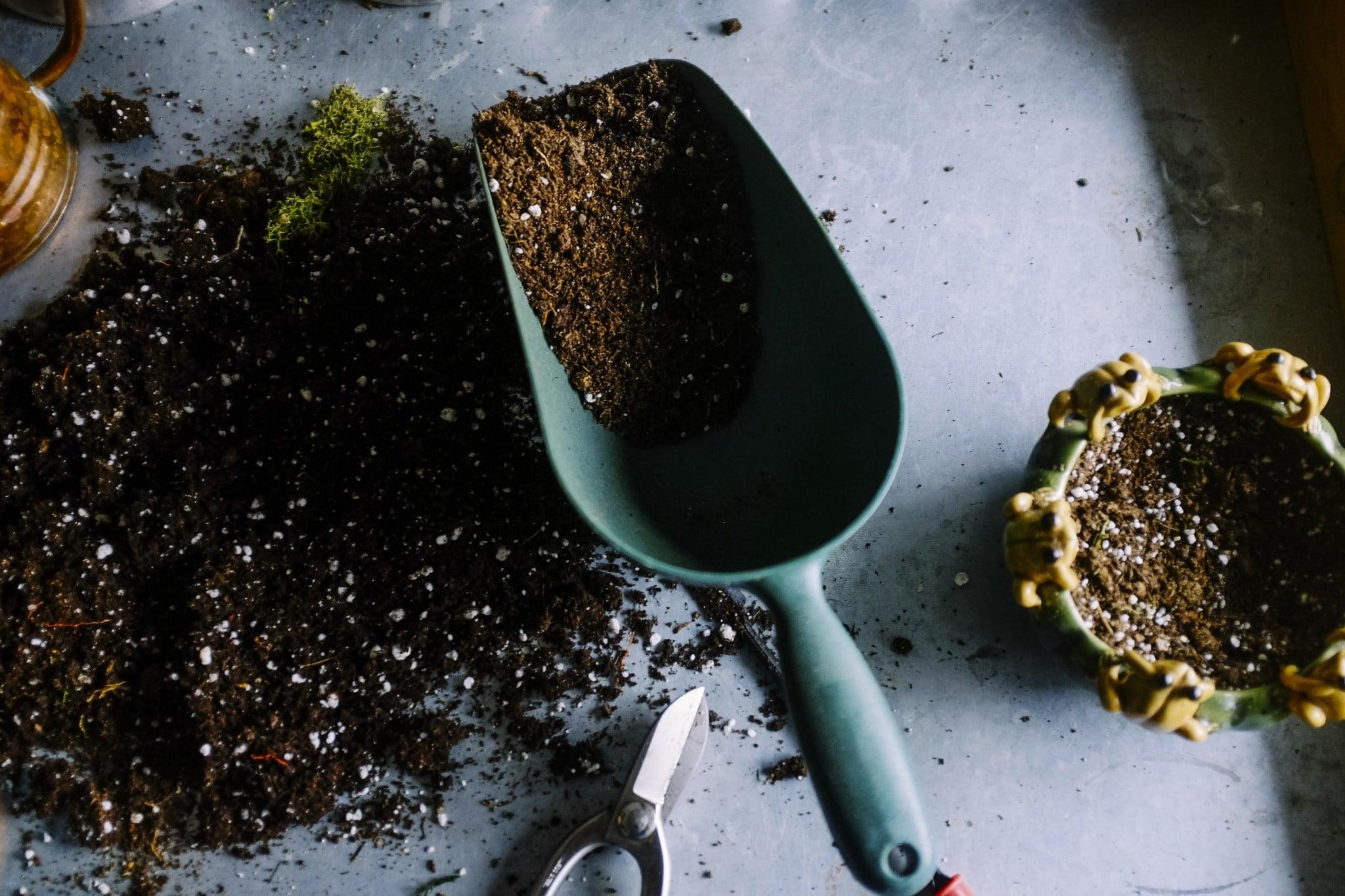 Canva Gardening Scoop and Soil 1 Moixa | Home Energy Storage | Smart Energy Management